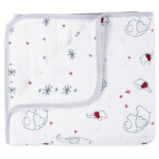 Aden and Anais Adore-able Dream Blanket