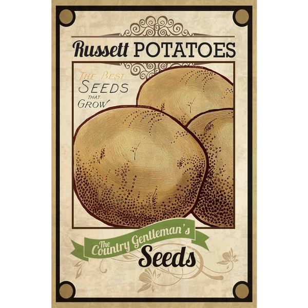 Marmont Hill - 'Seed Packet Potatoes' Painting Print on Canvas