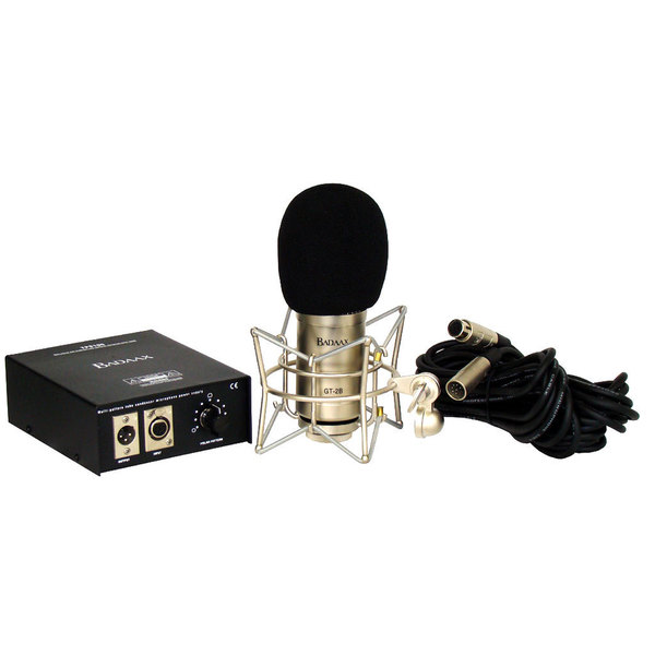 BadAax GT-2B Diaphragm Tube Condenser Microphone