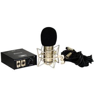 BadAax GT-2B Diaphragm Tube Condenser Microphone