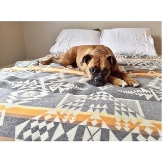 Pendleton Arrowhead Wool Blanket