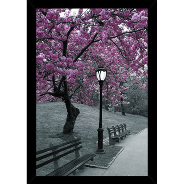 New York Central Park Blossom Print (24-inch x 36-inch) with Contemporary Poster Frame