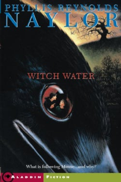 Witch Water (Paperback)