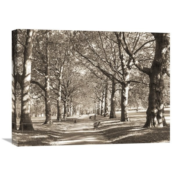 Big Canvas Co. James Emmerson 'Avenue of Trees in Green Park, London' Stretch Canvas Artwork