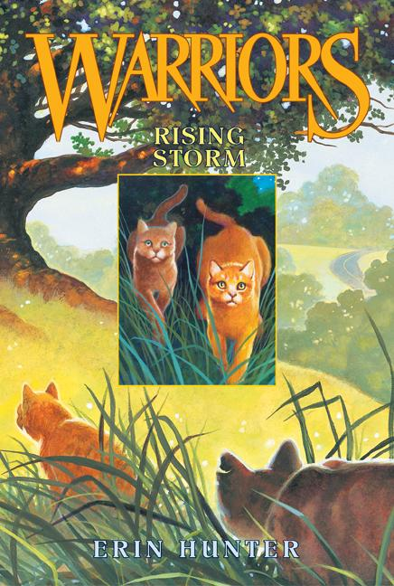Rising Storm (Paperback)