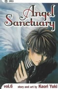 Angel Sanctuary 6 (Paperback)