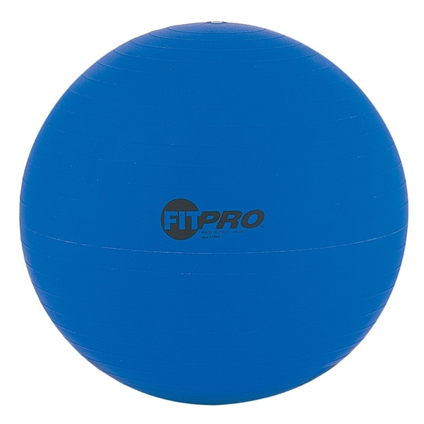Fitpro Training and Exercise Ball (53cm)