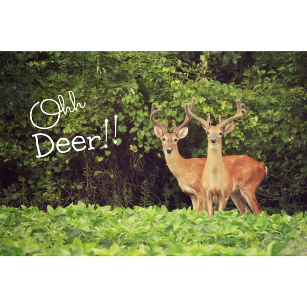 Marmont Hill - 'Ohh Deer' by Robert Dickinson Painting Print on Canvas
