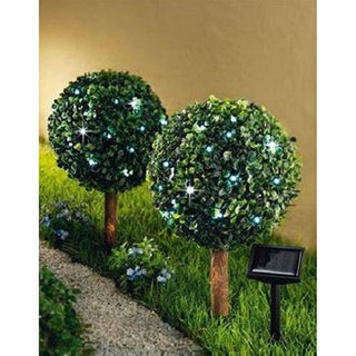 Topiary Lights (Set of 2)