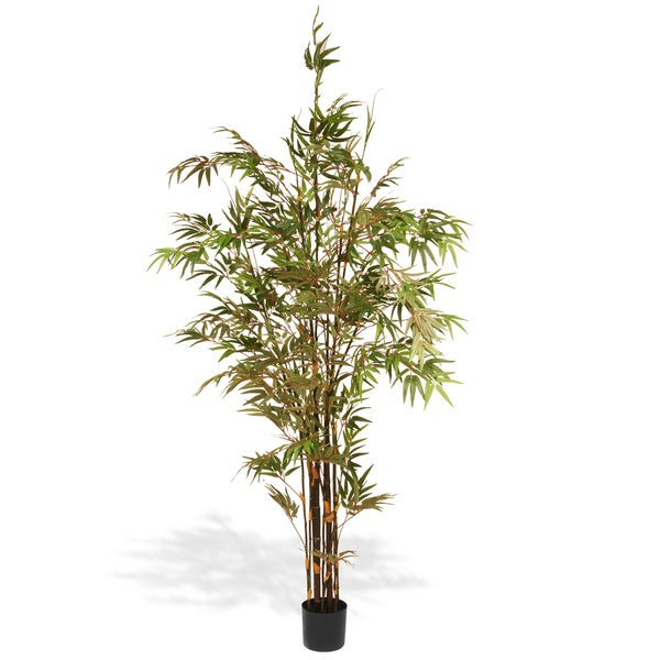 National Tree Company 6.7-inch Black Japanese Potted Bamboo Tree