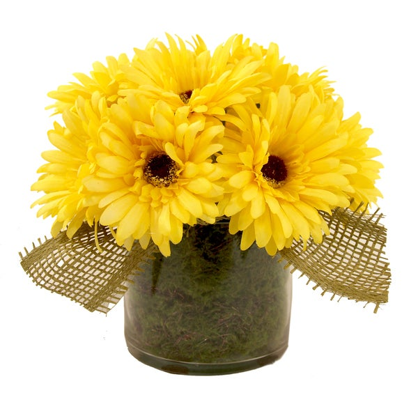 Creative Displays 10-inch Gerbera Daisies Floral Accented With Moss and Burlap Ribbon