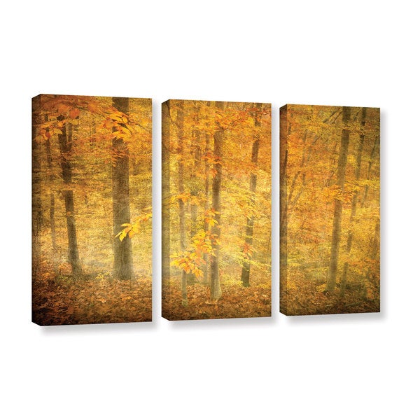 ArtWall David Kyle's Lost in Autumn, 3 Piece Gallery Wrapped Canvas Set