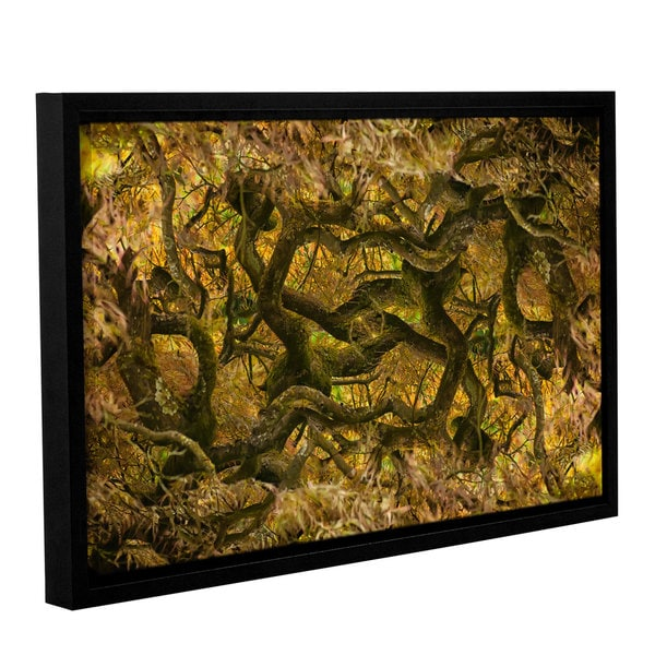 ArtWall Cora Niele's Acer Palmatum Dissectum Ornatum, Gallery Wrapped Floater-framed Canvas