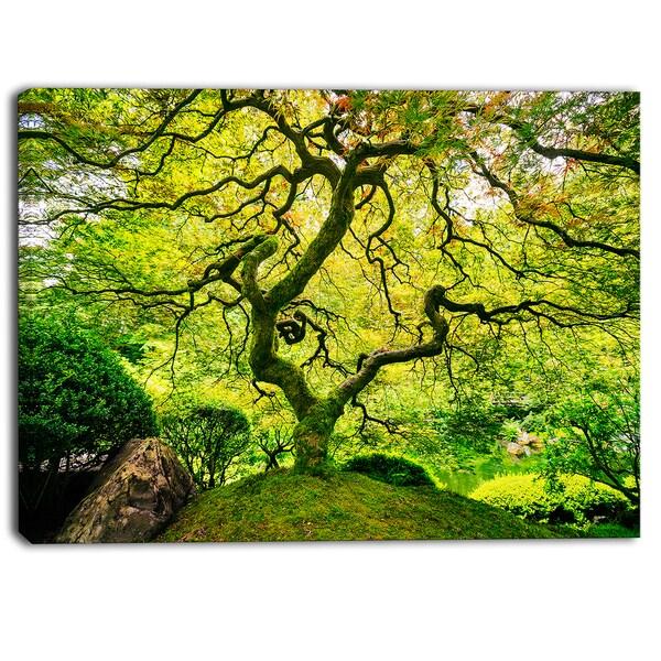 Designart - Amazing Green Tree Photography Canvas Art Print