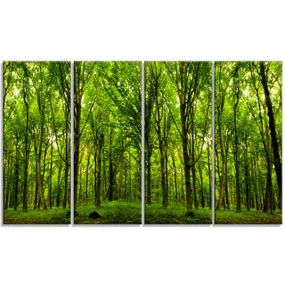 Designart - Green Forest - 4 Panels Landscape Photo Canvas Art Print