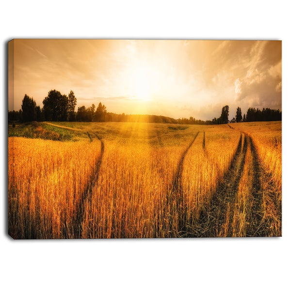 Designart - Wheat Field at Sunset Panorama Photo Canvas Art Print