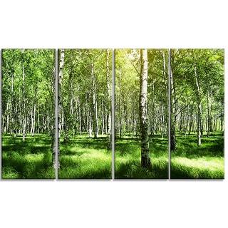 Designart - Beautiful Birch Grove - 4 Piece Landscape Canvas Art Print