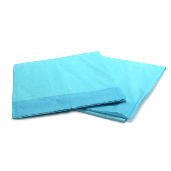 Case of 300 Disposable 2-ply Tissue Underpads (17 x 24)