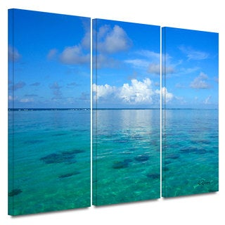 ArtWall George Zucconi's Lagoon & Reef 3-piece Gallery Wrapped Canvas Set