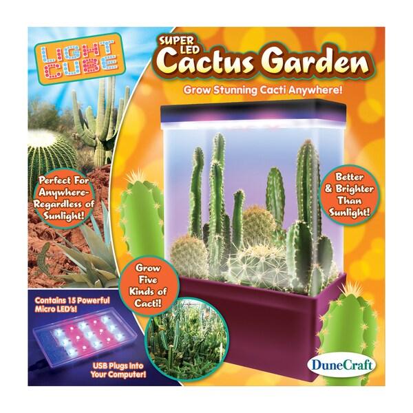 LED Light Cube Terrarium Cactus Garden