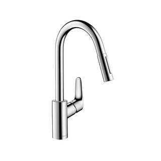 Hansgrohe Focus Single-hole Kitchen Faucet 04505000 Chrome