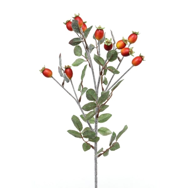 Red 22-inch Rose Hip Berry Stem (Pack of 6)