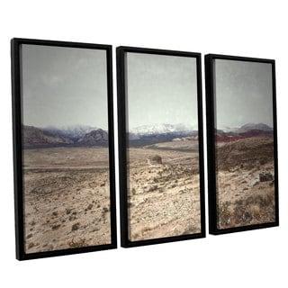 ArtWall Mark Ross's 'Looking Ahead' 3-piece Floater Framed Canvas Set