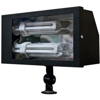 Jaxon 2-Light Outdoor Black Flood Light