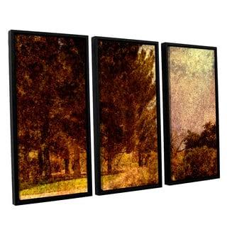 ArtWall Mark Ross's 'Passing' 3-piece Floater Framed Canvas Set
