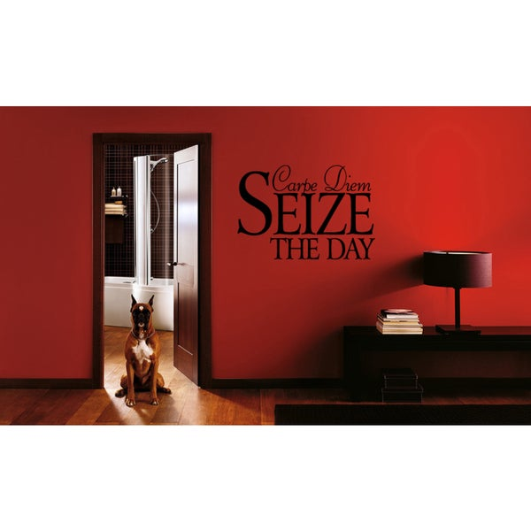 Expression Carpe Diem Seize The Day Wall Art Sticker Decal
