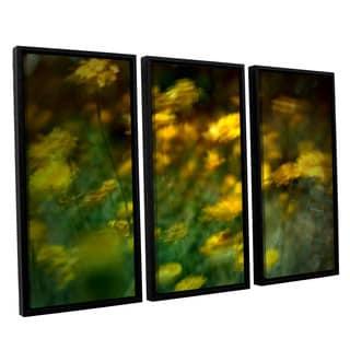 ArtWall Mark Ross's 'Carry' 3-piece Floater Framed Canvas Set