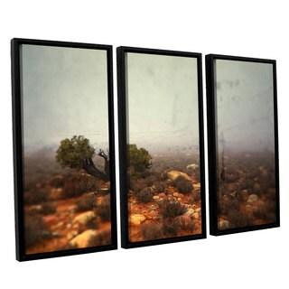 ArtWall Mark Ross's 'Silent ' 3-piece Floater Framed Canvas Set