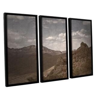 ArtWall Mark Ross's 'Wishing For Wings' 3-piece Floater Framed Canvas Set
