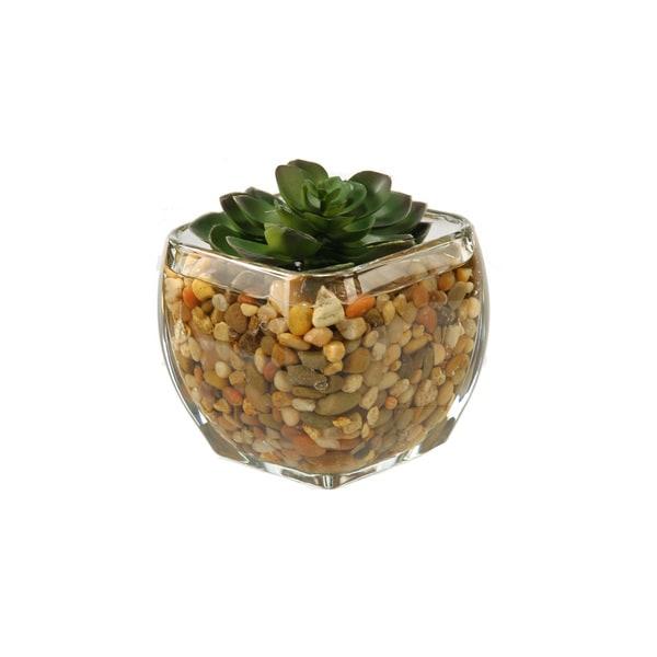Small Glass Cube Floral Arrangement