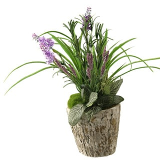 Mixed Herbs and Lavender in Oak Look Cement Planter