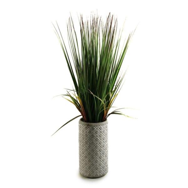 32-inch Onion Grass in Ceramic Planter
