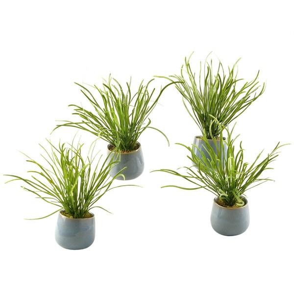 Pearl Grass in Small Ceramic Planter (Set of 4) 17777949