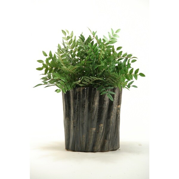 Green Locust Spray in Oval Ceramic Planter