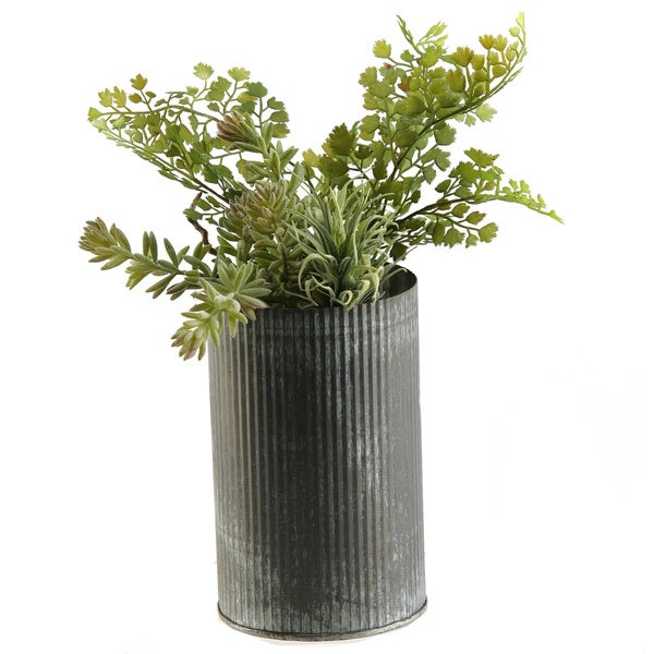 Sedum and Iron Fern in Zinc Vase