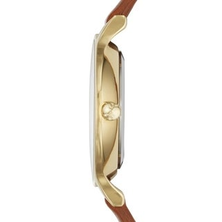 Skagen Women's Brown Leather Anita Champagne Dial Watch