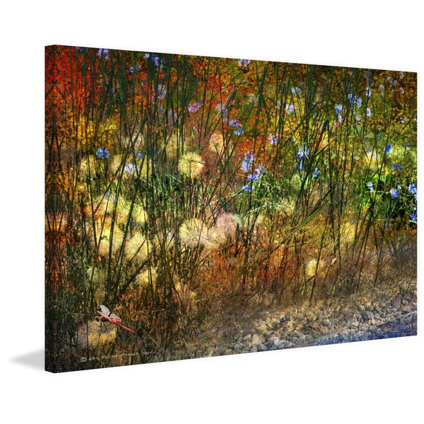 Marmont Hill 'Meadow Dragon Fly' by Chris Vest Painting Print on Canvas