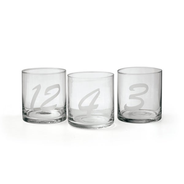 Hip Vintage Amador Tumbler (Set of 12)