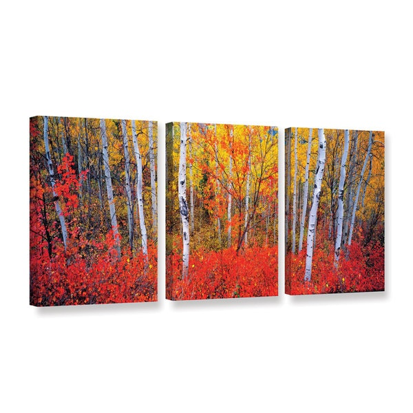 Gary Crandall's 'Changing Seasons' 3 Piece Gallery Wrapped Canvas Set