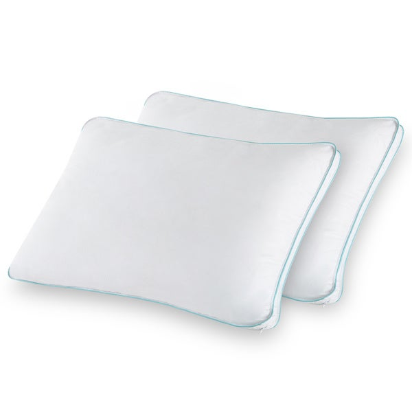 Priage Queen Memory Foam Cluster Classic Pillow (Set of 2)