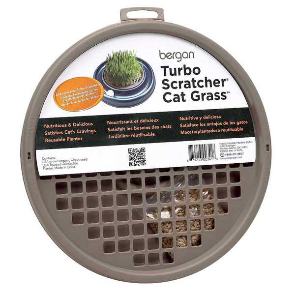 Bergan Turbo Cat Grass Scratcher Toy