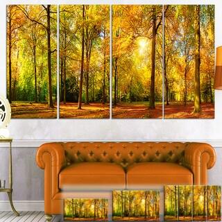 Designart 'Gorgeous Autumn of Sunny Forest' Landscape Photo Canvas Wall Art