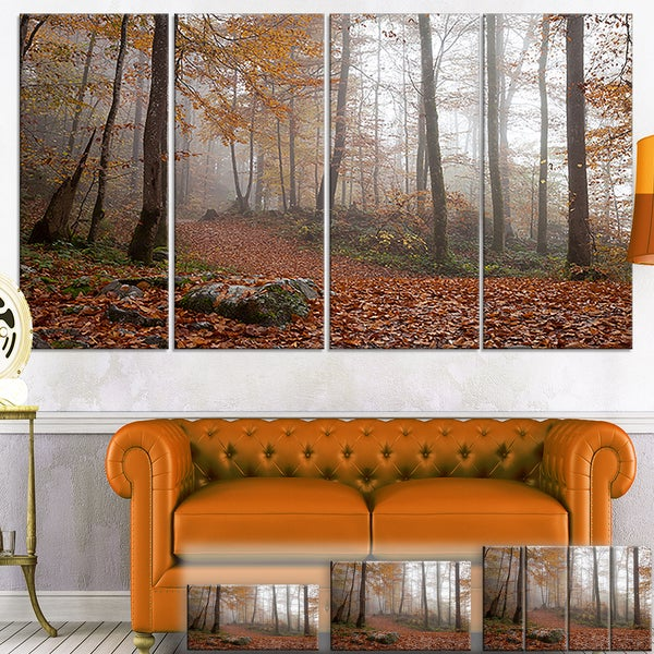 Designart 'Autumn Forest in Germany' Landscape Photo Canvas Wall Art 33409238