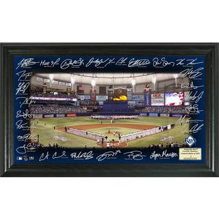 Tampa Bay Rays 2016 Signature Field