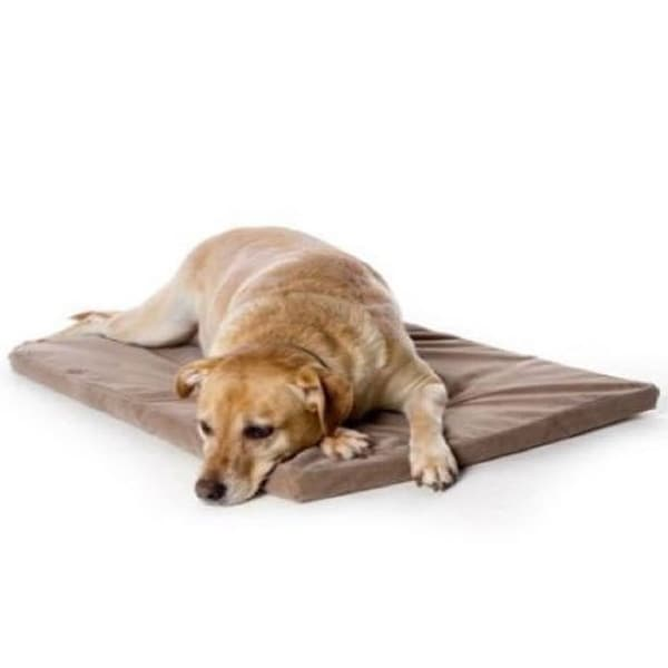Pyara Paws Memory Foam Bed Size Small