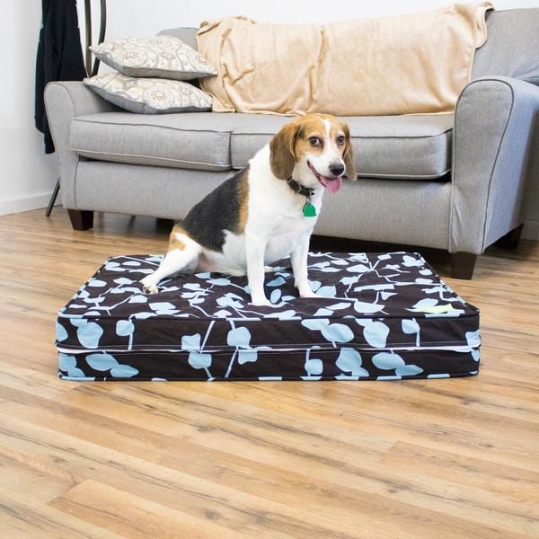Huckleberry Gel Memory Foam Orthopedic Dog Bed with Waterproof Encasement